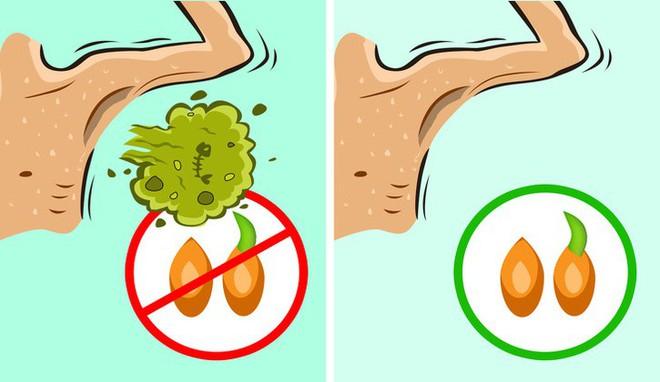 11 nguyên liệu tự nhiên giúp loại bỏ mùi hôi cơ thể - Ảnh 5.