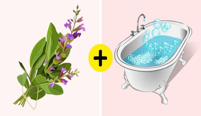 11 nguyên liệu tự nhiên giúp loại bỏ mùi hôi cơ thể - Ảnh 7.