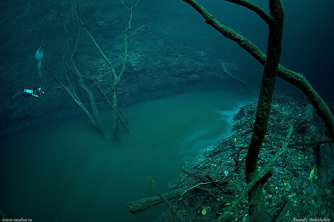 Xuất hiện dòng sông ma ở độ sâu 30m dưới nước - Ảnh 3.