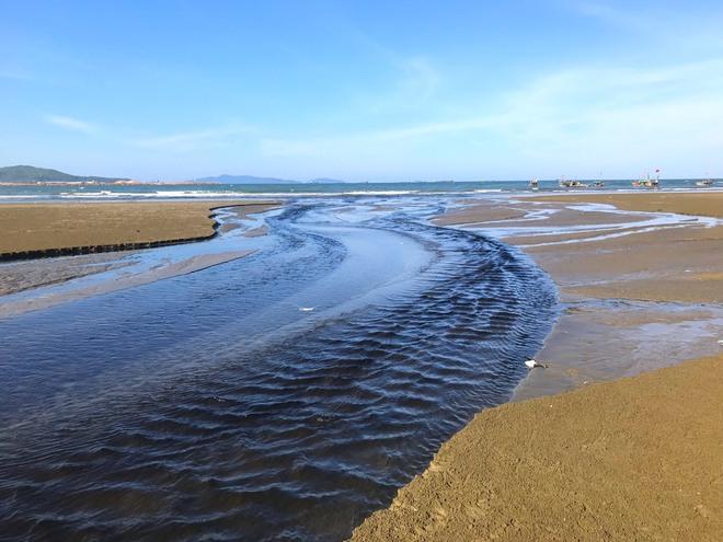 Vụ trại tôm xả thải ô nhiễm cả 1 vùng: Trang trại bất chấp dư luận tiếp tục xả thải ra biển - Ảnh 3.