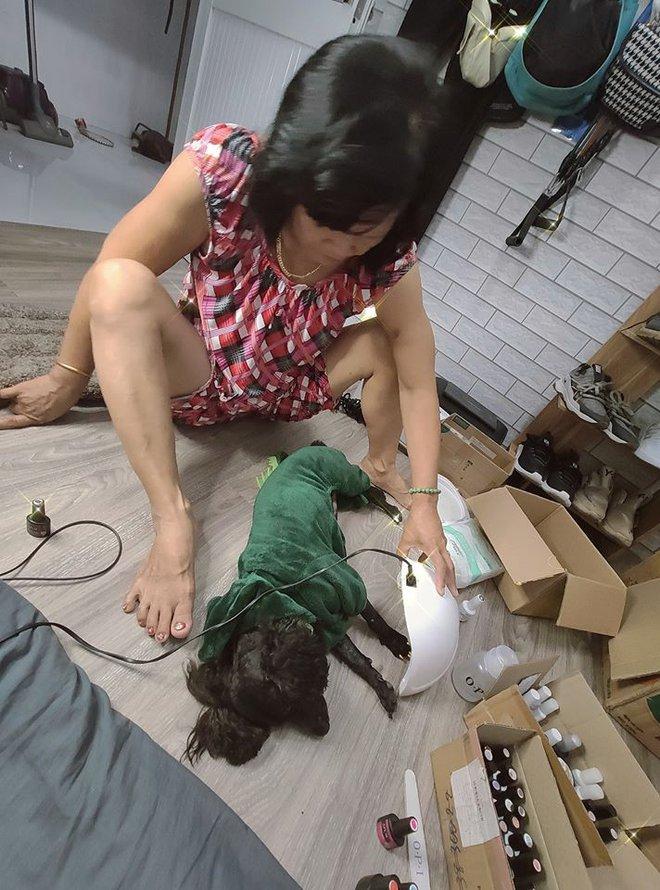 Chú chó điệu chảy nước sắp lên chức bố vẫn sơn móng đính đá, xu nịnh phụ huynh khiến anh chủ mếu máo vì bị thành con ghẻ - Ảnh 2.