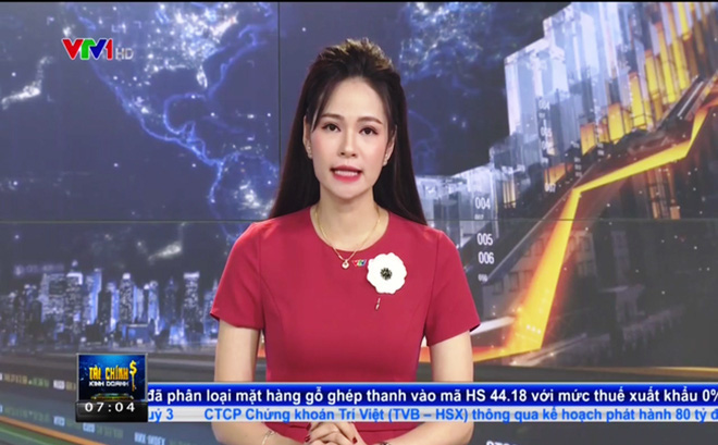 VTV chính thức xin lỗi vụ BTV dùng từ ngữ nhạy cảm để nói về người bán hàng rong