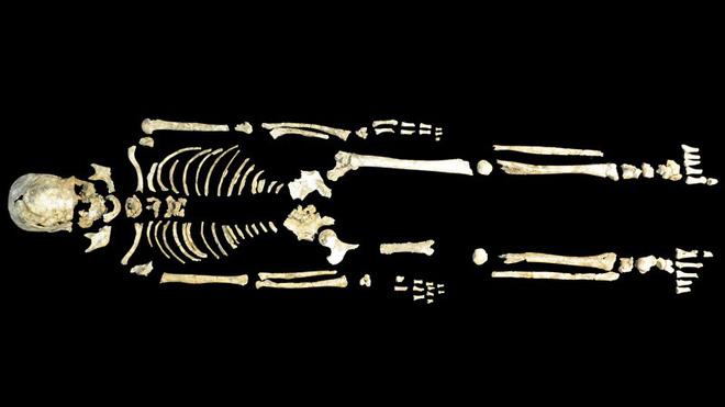 Bộ gen người cổ đại làm sáng tỏ lịch sử Đông Á - Ảnh 1.