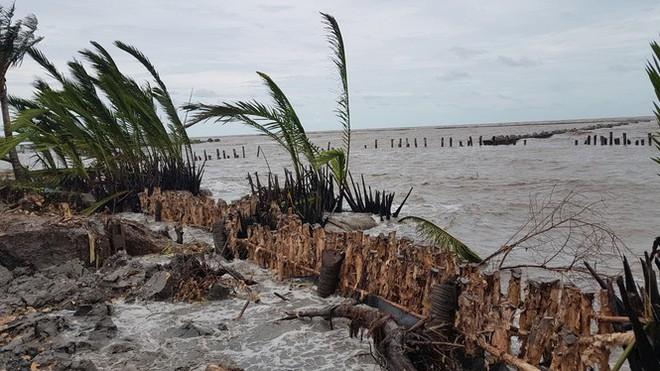Kiên Giang công bố tình trạng sạt lở đê biển nghiêm trọng - Ảnh 1.