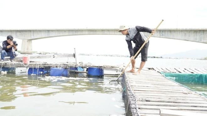 Mất hàng tỷ đồng vì cá chết bất thường trên sông Chà Và - Ảnh 2.