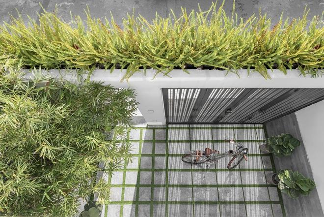 Tp.HCM: Căn nhà tạo sự ảo giác, có hồ cá Koi và vườn cây trên sân thượng - Ảnh 11.
