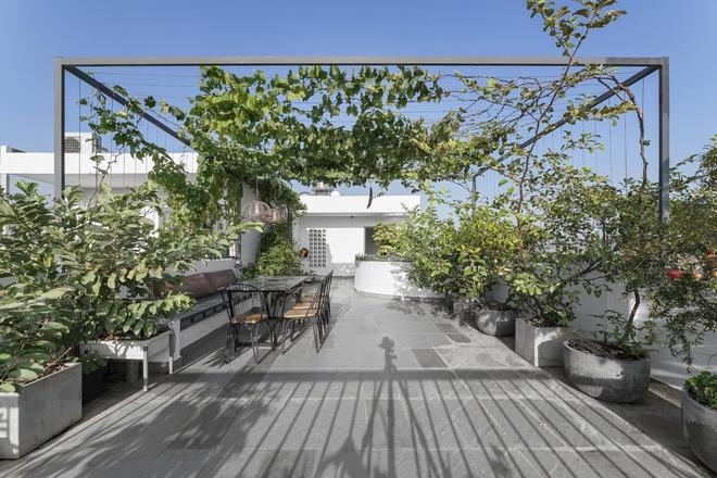 Tp.HCM: Căn nhà tạo sự ảo giác, có hồ cá Koi và vườn cây trên sân thượng - Ảnh 6.