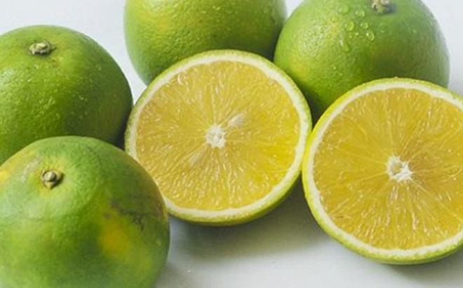 Điểm mặt gọi tên các loại cam và cách chọn cam chuẩn xịn nhiều nước ngọt thơm nhất