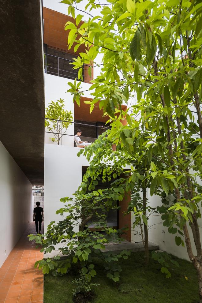 Ngôi nhà 7 phòng và tấm bình phong giá rẻ tại Bình Thạnh trên báo ngoại - Ảnh 2.