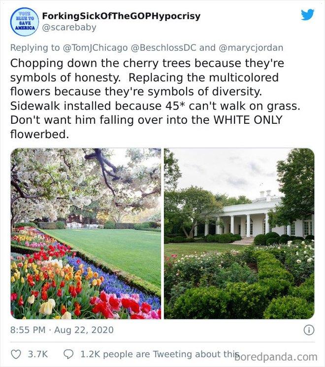 Dân mạng thi nhau post ảnh mỉa mai Đệ nhất phu nhân Mỹ Melania đã làm hỏng Vườn Hồng - Ảnh 4.