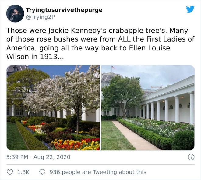 Dân mạng thi nhau post ảnh mỉa mai Đệ nhất phu nhân Mỹ Melania đã làm hỏng Vườn Hồng - Ảnh 8.