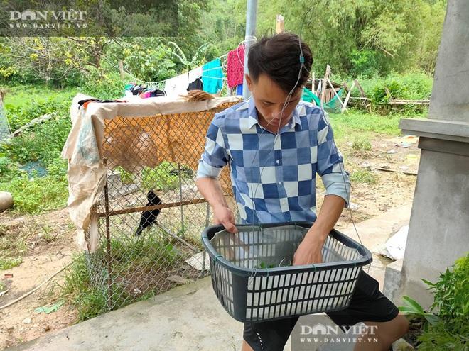 Quảng Ninh: Vườn lan phi điệp 500 giò giữa biển khơi, lan đột biến bán mỗi giò giá 30 triệu - Ảnh 4.