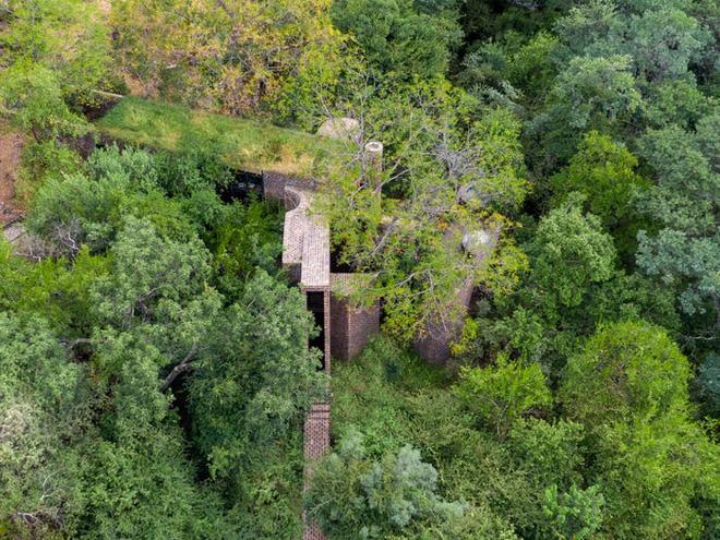 Ngôi nhà siêu dị được thiết kế để ẩn mình trong tán cây - Ảnh 2.