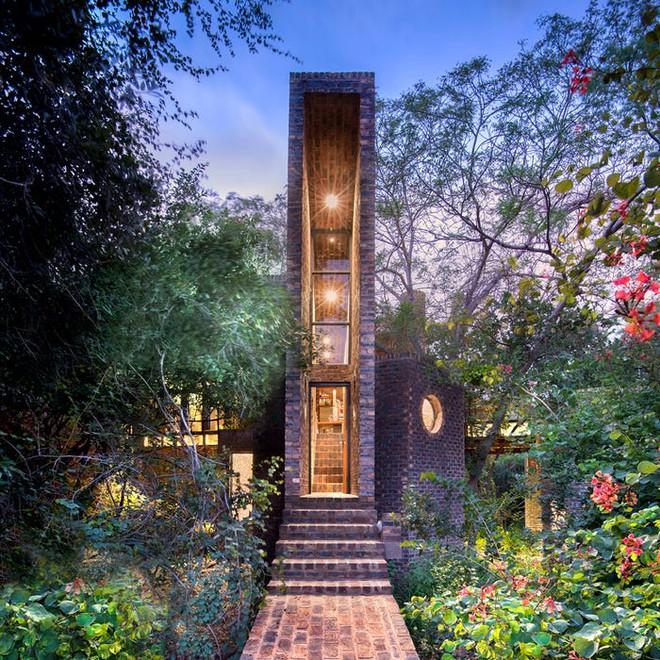Ngôi nhà siêu dị được thiết kế để ẩn mình trong tán cây - Ảnh 7.