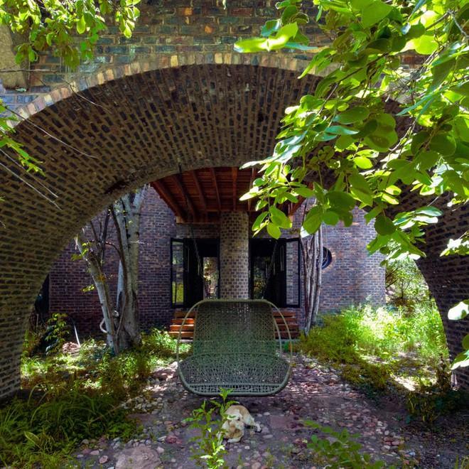 Ngôi nhà siêu dị được thiết kế để ẩn mình trong tán cây - Ảnh 11.