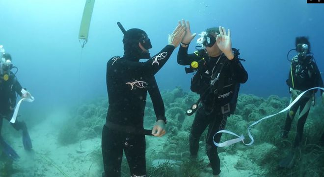 Cận cảnh bảo tàng dưới nước du khách tự do bơi lội ngắm xác tàu cổ đại - Ảnh 3.