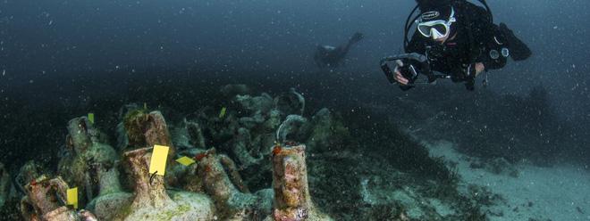 Cận cảnh bảo tàng dưới nước du khách tự do bơi lội ngắm xác tàu cổ đại - Ảnh 6.