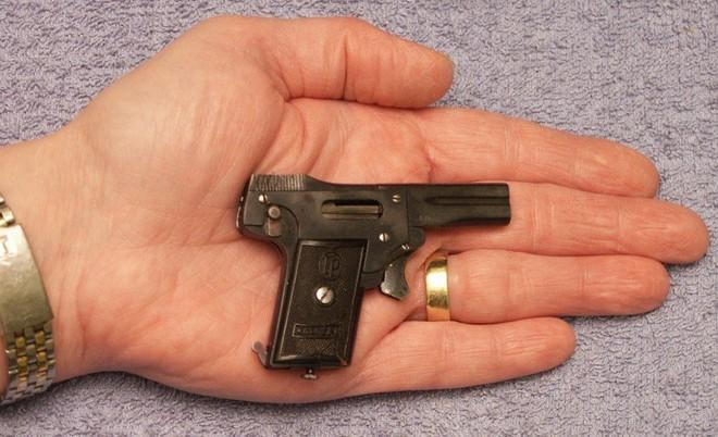Những khẩu súng phá vỡ mọi tiêu chuẩn trên thế giới - Ảnh 10.