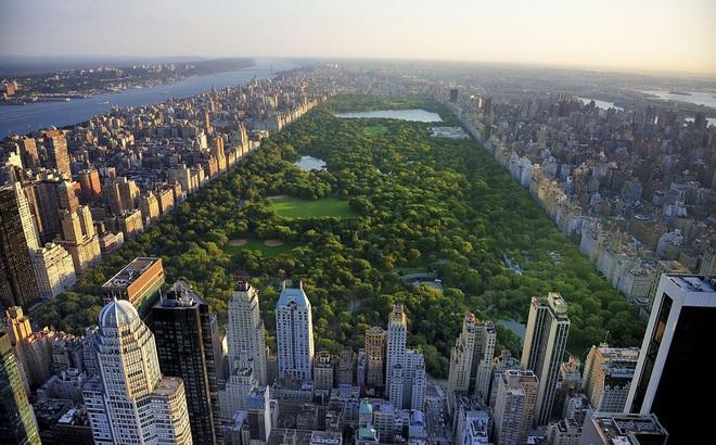 Bí mật đen tối đằng sau 'lá phổi xanh' của thành phố New York