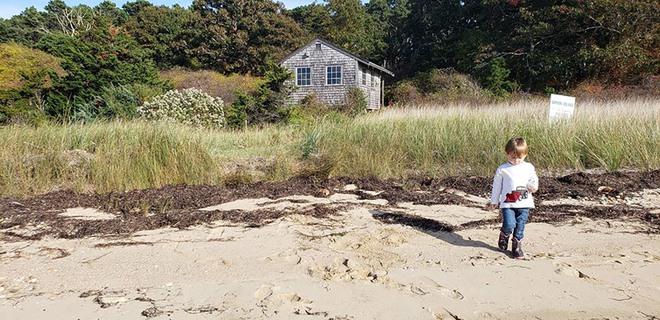Khám phá hòn đảo trái tim lần đầu tiên đón khách sau 300 năm - Ảnh 5.