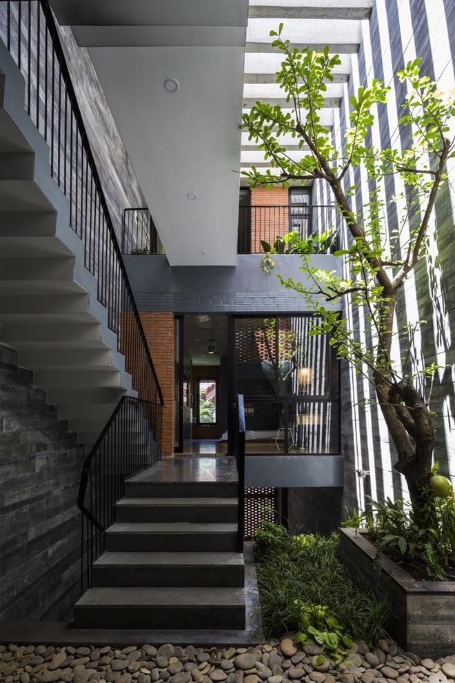 Resort trong nhà của cặp vợ chồng trẻ tại Đà Nẵng có gì đặc biệt mà được báo Mỹ ca ngợi? - Ảnh 3.