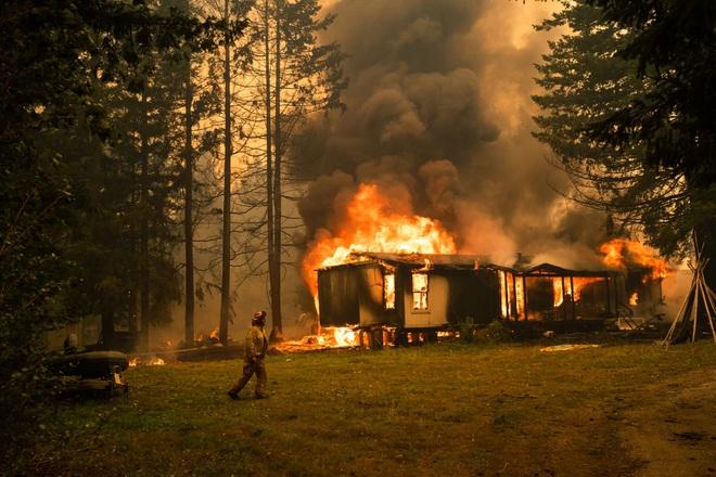 Chạy trốn cháy rừng, bé trai gục chết cạnh chó cưng - Ảnh 2.