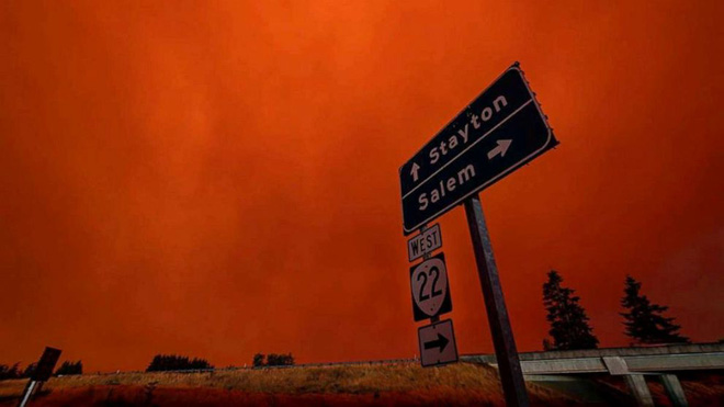 Chạy trốn cháy rừng, bé trai gục chết cạnh chó cưng - Ảnh 5.