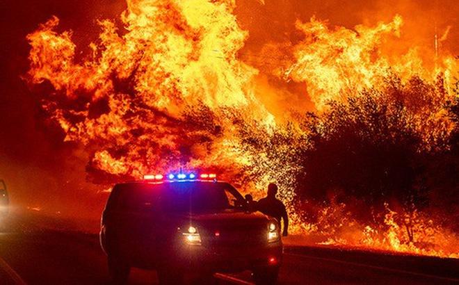 Chạy trốn cháy rừng, bé trai gục chết cạnh chó cưng