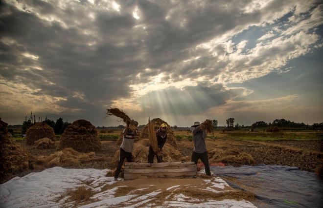 24h qua ảnh: Bão cát khủng khiếp tấn công thủ đô của Thổ Nhĩ Kỳ - Ảnh 3.