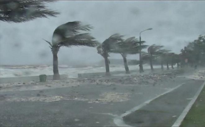 Tin bão khẩn cấp cơn bão số 5