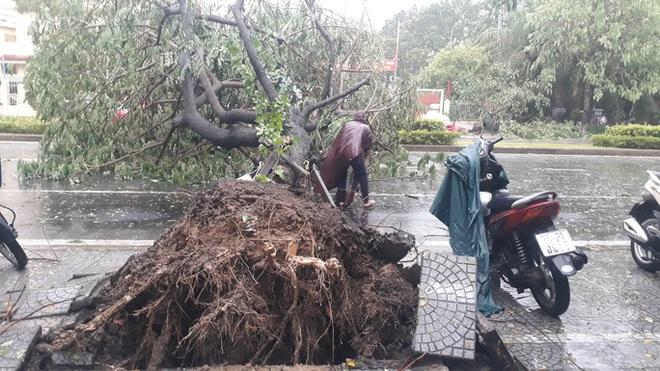 Bão số 5: Gió bão mạnh quật ngã hàng loạt người đi xe máy ở TP Huế - Ảnh 3.