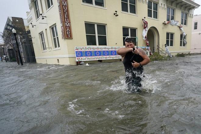 Cá sấu bơi lúc nhúc trên... đường phố ở Mỹ - Ảnh 5.