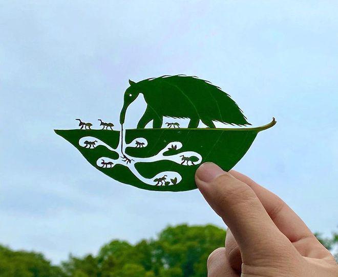Bằng chứng độc đáo chứng minh lá cây có thể tạo nên tác phẩm nghệ thuật - Ảnh 4.