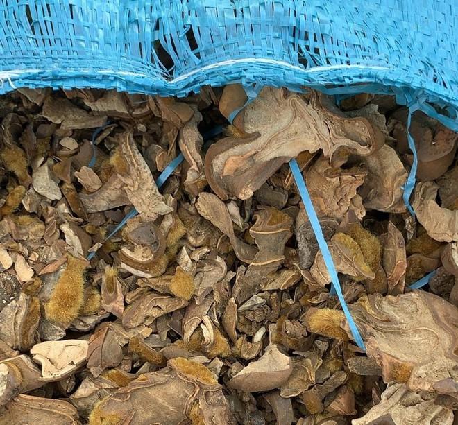 Bắt gần nửa triệu bao thuốc lá ngoại tại Móng Cái - Ảnh 1.