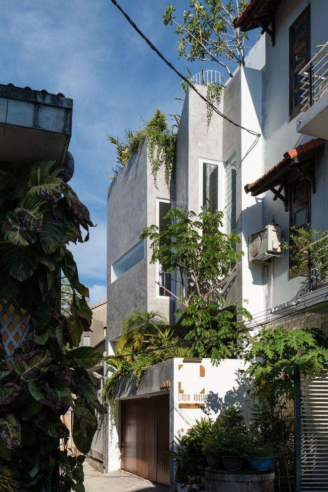 Kiệt tác kiến trúc trong ngôi nhà có mặt tiền đầy nếp gấp - Ảnh 2.