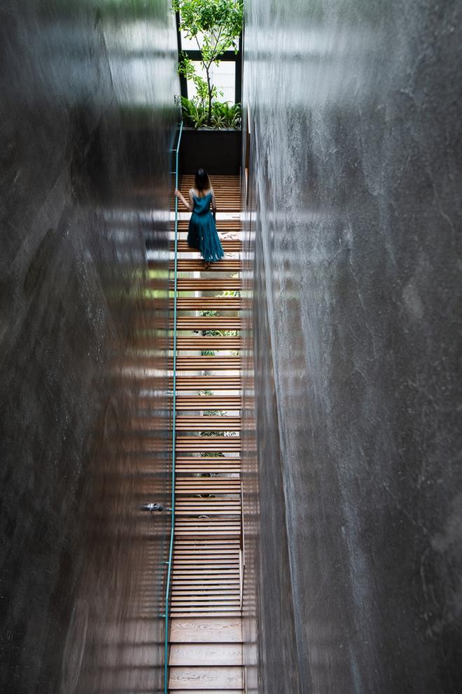 Lạ mắt với căn nhà có cầu thang xanh ngắt, bao phủ bởi khu vườn nhiệt đới - Ảnh 8.