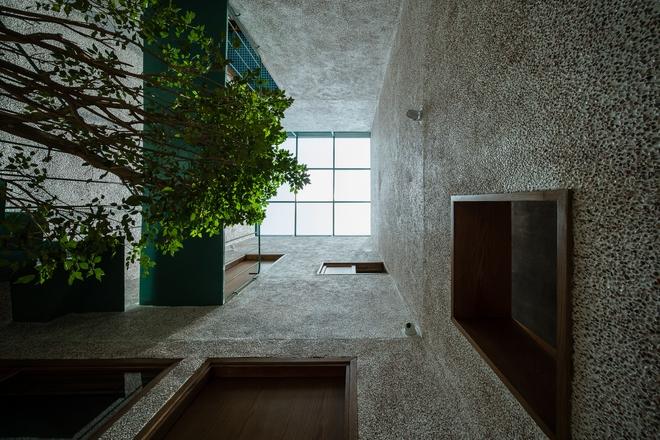 Lạ mắt với căn nhà có cầu thang xanh ngắt, bao phủ bởi khu vườn nhiệt đới - Ảnh 6.