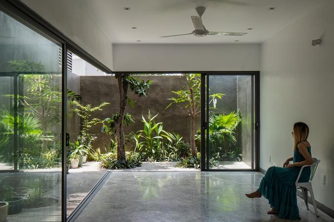 Lạ mắt với căn nhà có cầu thang xanh ngắt, bao phủ bởi khu vườn nhiệt đới - Ảnh 7.