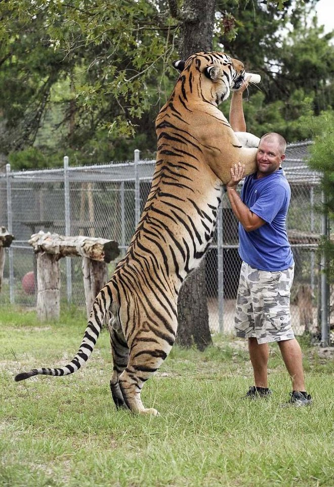 16 bức ảnh cho thấy con người nhỏ bé trước động vật hoang dã ra sao: Ảnh cuối ấn tượng nhất - Ảnh 7.