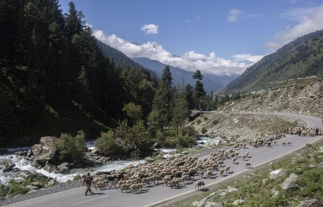 Xung đột Trung-Ấn mới nhất: Ấn Độ phong tỏa đường cao tốc chính, xe quân sự ùn ùn ra biên giới - Ảnh 5.