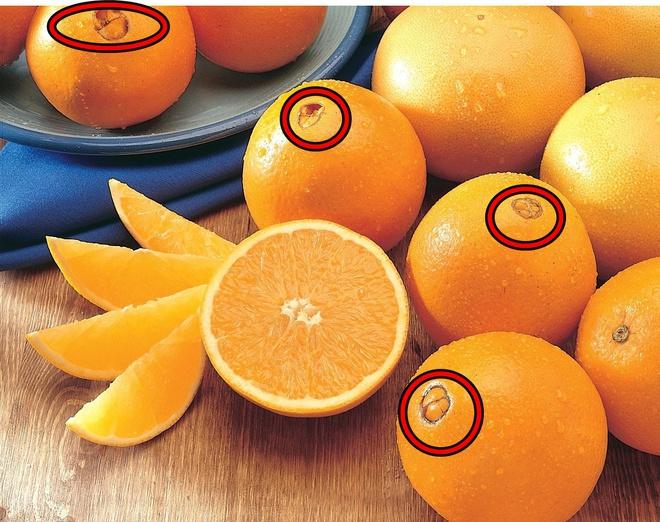 Phát hiện đặc điểm này khi mua cam, chị em nội trợ sành sỏi cho lời khuyên đáng tiền - Ảnh 5.