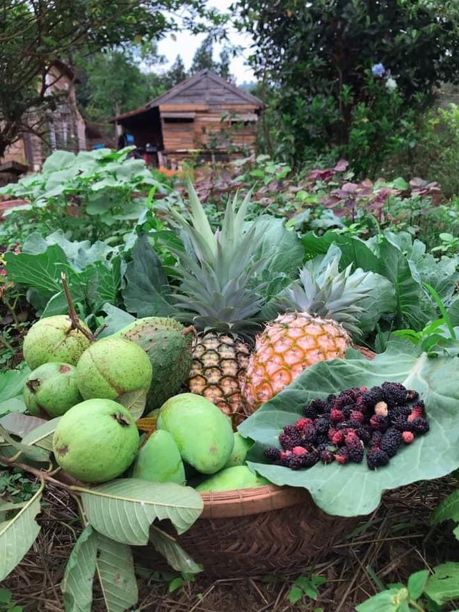 Cặp đôi Sài Gòn bỏ thành phố lên Tây Nguyên trồng rau, nuôi cá, xây dựng cuộc sống tựa cổ tích - Ảnh 6.