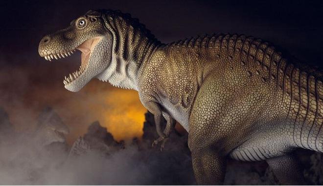 Top 10 sự thật ít người biết về loài khủng long ăn thịt đáng sợ nhất thế giới - Ảnh 3.