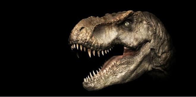 Top 10 sự thật ít người biết về loài khủng long ăn thịt đáng sợ nhất thế giới - Ảnh 4.