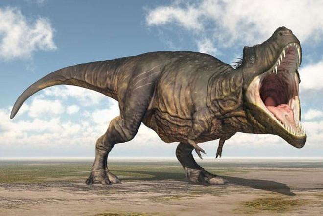 Top 10 sự thật ít người biết về loài khủng long ăn thịt đáng sợ nhất thế giới - Ảnh 7.