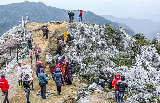 Hàng ngàn du khách bất chấp rét buốt lên đỉnh Mẫu Sơn ngắm băng tuyết - Ảnh 6.