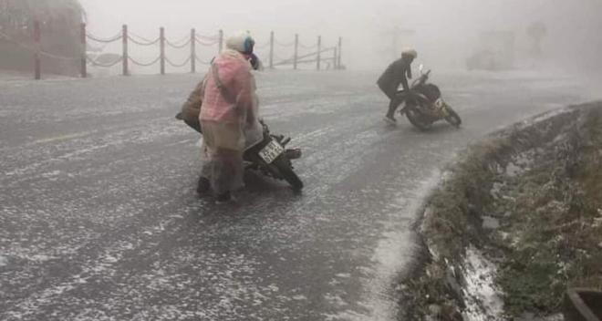 Hàng chục con trâu chết rét khi băng tuyết phủ trắng Y Tý, Sa Pa - Ảnh 2.