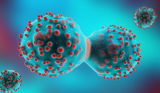 Sốc với các thủ thuật tinh quái của tế bào ung thư: Chuyển trạng thái dễ nuôi và giả vờ biến mất... - Ảnh 3.
