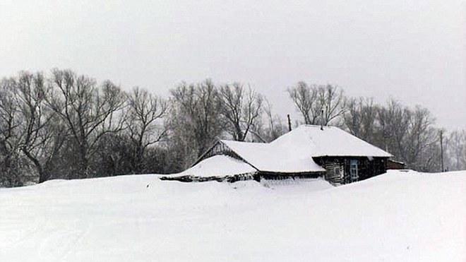 Thấy con chó co ro trong tuyết lạnh, người dân chạy đến cứu thì sững sờ với thứ nó giấu bên dưới - Ảnh 1.