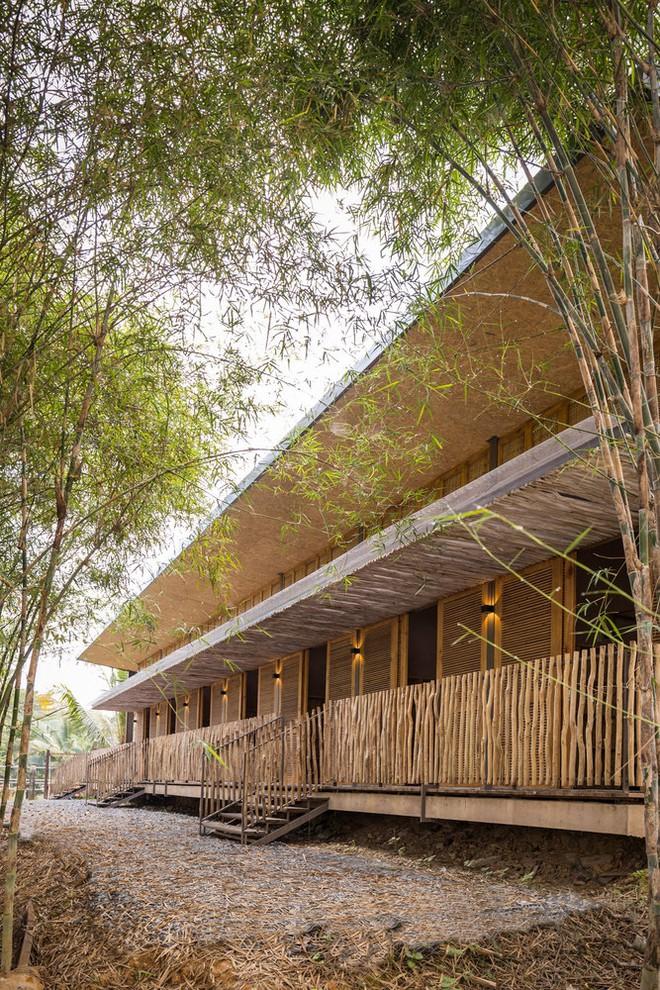Ngôi nhà mái bằng trấu, vách vôi ở Đồng Nai nổi bật trên báo ngoại - Ảnh 2.